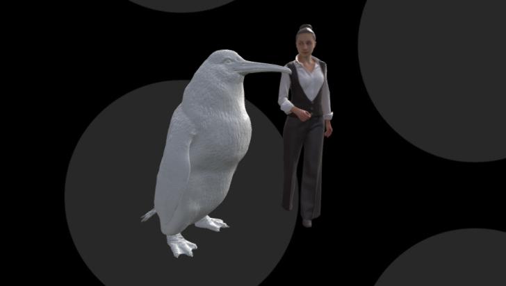 Un pingüino del tamaño de un humano vivió alguna vez en Nueva Zelanda