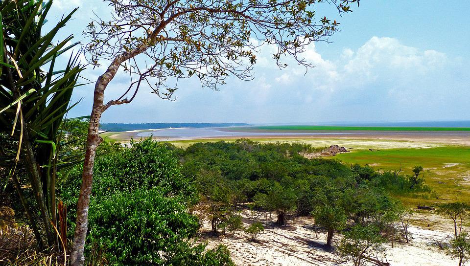 Colombia propone proyecto regional frente a catástrofe ambiental en Amazonas