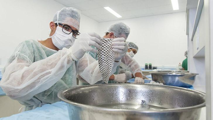 Caleño realiza la primera vaginoplastia con piel de tilapia a mujer trans en Colombia