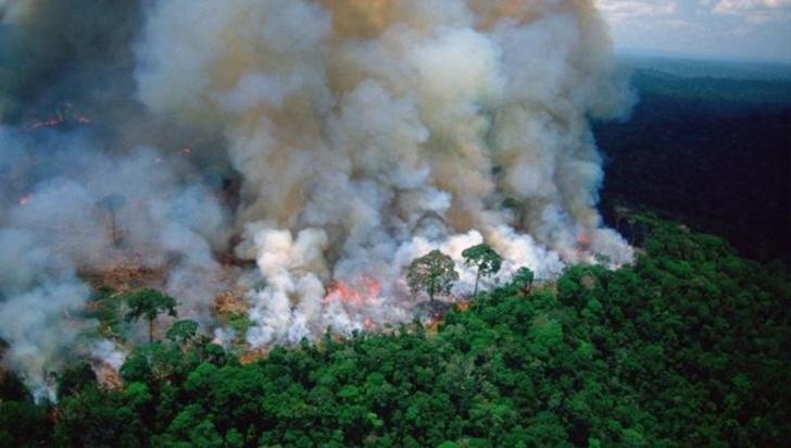 Cumbre del G7 acordó ayudar a países afectados por incendios en la Amazonía