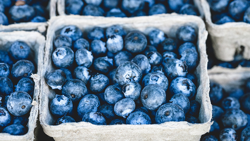 Colombia busca ubicarse entre los diez mayores exportadores de arándano azul