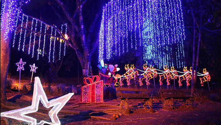 Navidad: las luces se encendieron en el parque De la Vida