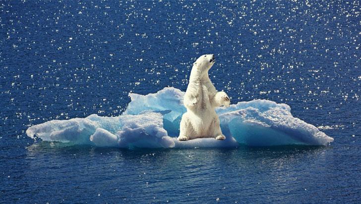 Cambio Climático: sequías, olas de frío y huracanes serán la nueva normalidad