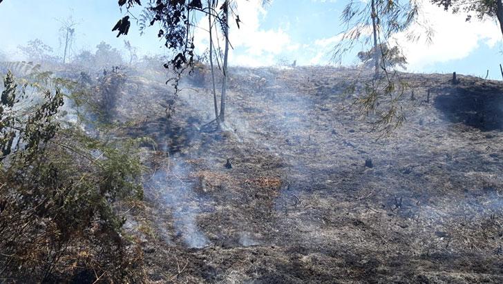 Cuatro hectáreas de bosque, quemadas en Chagualá