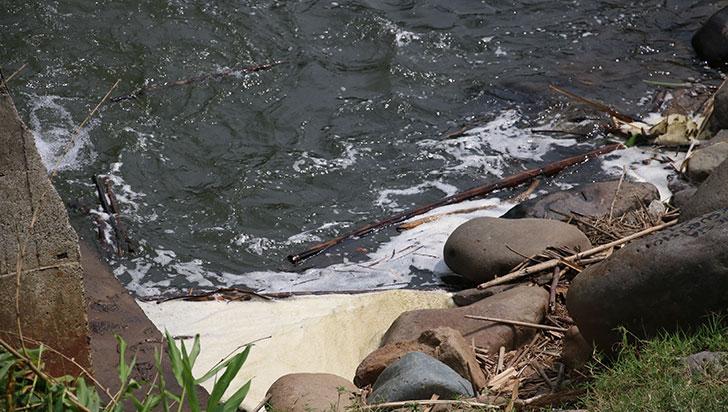 Espuma en río puede aparecer por contaminación o procesos naturales