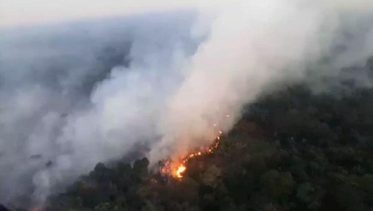 Disidencias de las Farc provocan incendios que arrasan bosques de La Macarena