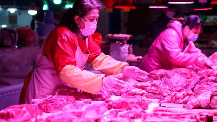 WWF: Cierre de mercados ilegales de animales, vital para seguridad sanitaria