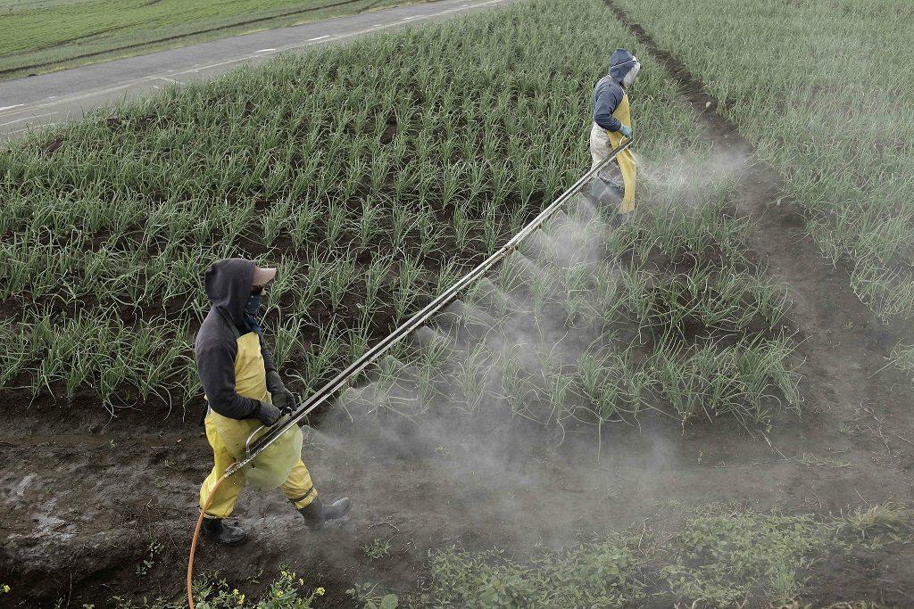Colombia, España y otros 30 países confiscan 1.346 toneladas de pesticidas