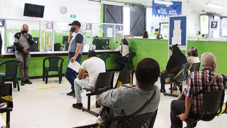 Impresión de licencias enSettase reanudaría el próximo lunes
