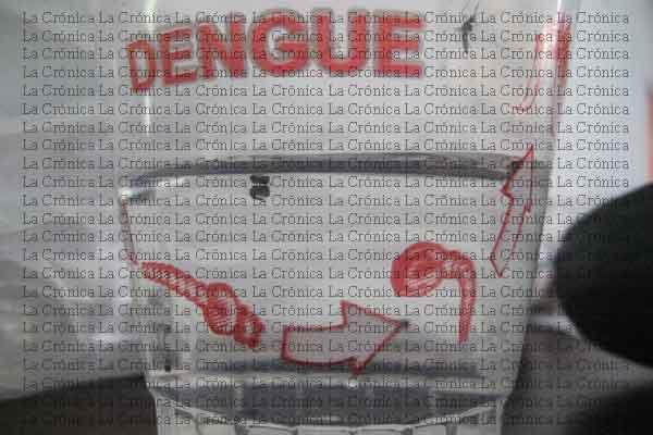 """Evaluación de estudio piloto de dengue """"en canal de éxito"""""""