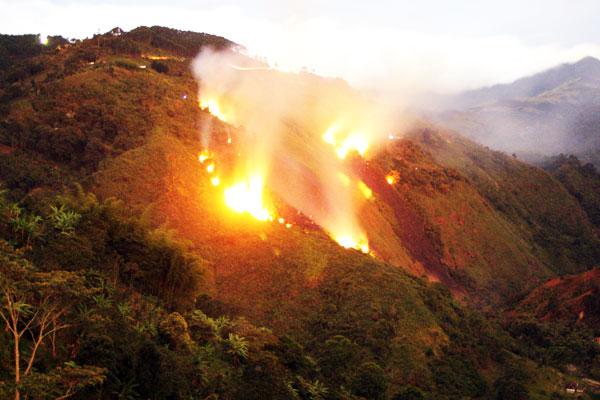 4 hectáreas consumidas por el fuego en Calarcá