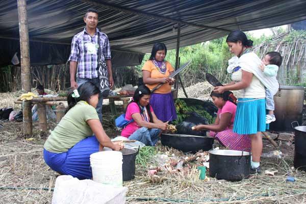 Problematicas de las comunidades indigenas actuales en for Oficina fecsa endesa
