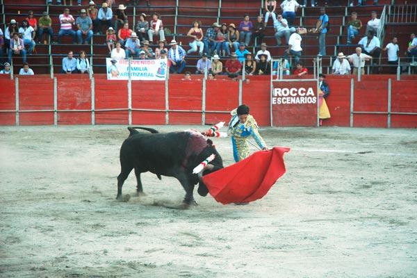Proyecto de acuerdo prohibió las corridas  de toros en La Tebaida