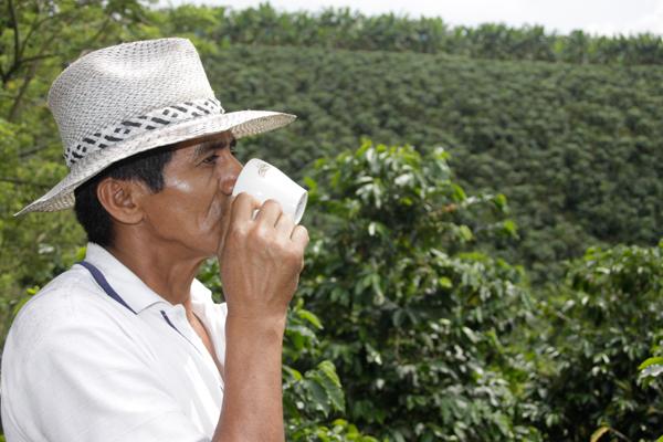 La morelia cumple cuatro a os de darle valor agregado al for Oficinas dhl colombia
