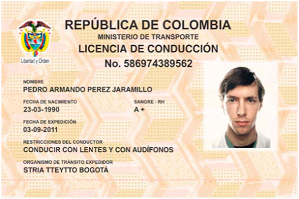 Nueva licencia de conducción, renovación, vigencias y categorías