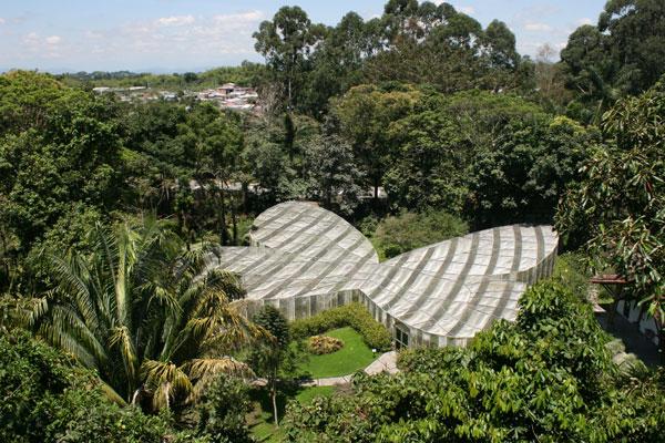 Gerente de Fedecafé en los 35 años del Jardín Botánico