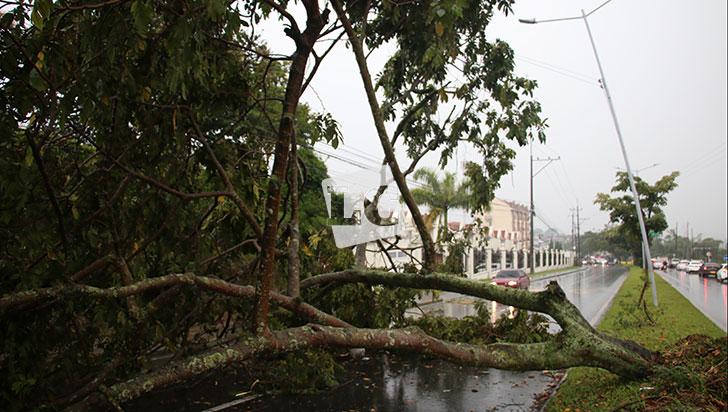 Lluvias continúan y con ellas riesgo de deslizamientos e inundaciones