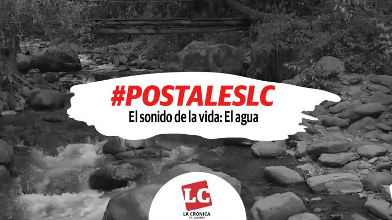 #PostalesLC #ElSonidoDeLaVida