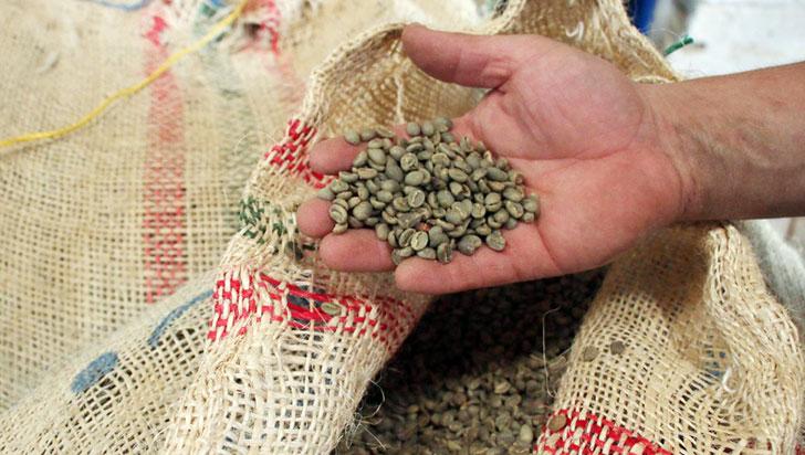 Por el paro los cafeteros están  incumpliendo con las exportaciones