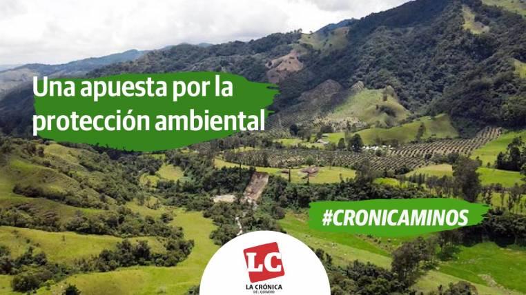 cronicaminos-una-apuesta-por-la-proteccion-ambiental