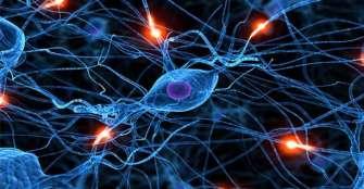 Diseñan patrón para mejorar estimulación cerebral en pacientes con Parkinson