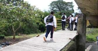 Los pasamanos de puente peatonal del colegio Nacional, víctimas de hurto