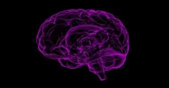 Dormir en exceso genera mayor riesgo de un derrame cerebral