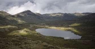 El páramo de Chingaza, reserva hídrica en riesgo por el consumo
