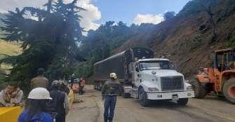 Deforestación y pastoreo provocan derrumbe en La Línea