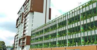 Constructora Camu, comprometida con la sostenibilidad, el bienestar y la vida, construyó el 'jardín vertical' más grande del Eje Cafetero