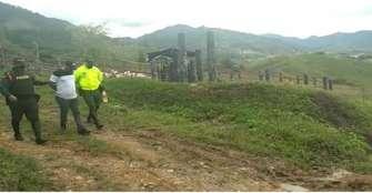15 reses robadas en La Tebaida fueron recuperadas en Tuluá