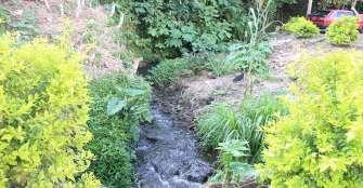 El Quindío le apuesta a biodiverciudades, ¿positivo para el medio ambiente?