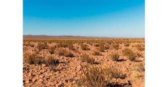 Las sequías en América del Sur se están volviendo cada vez más serias