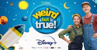"""Disney reduce  """"drásticamente"""" su publicidad en Facebook, según diario estadounidense"""