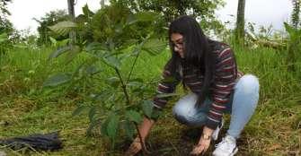 Especialización en Gestión Ambiental, una nueva apuesta académica de la Universidad La Gran Colombia
