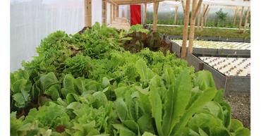 Agricultores se conectan con visión holística de la agroecología