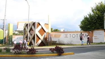 Decretan medida cautelar de suspensión provisional a licencia urbanística de Totem