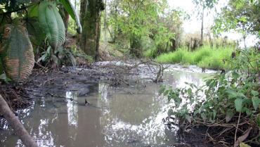 Vertimientos de Boquía en el río Quindío, sin solución