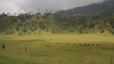 Gestión del riesgo debe llegar a la comunidad para afrontar alertas naturales