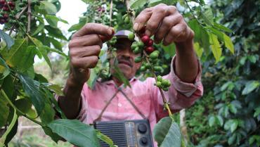 Presentan proyecto para que los trabajadores del campo reciban un salario justo