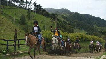 Valle de Cocora ya no es sujeto de derechos, urge modelo de desarrollo turístico sostenible