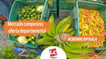 #Cronicápsula | Mercado campesino: oferta departamental