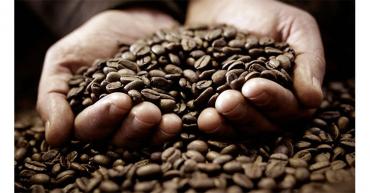 El precio del café ha subido el 75% en 2021, con respecto a 2020