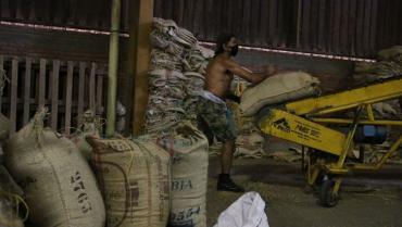 Ya han salido 120 toneladas de café del Quindío