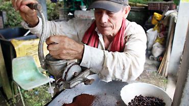 Día Nacional Del Café, más que una celebración