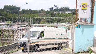 En Quimbaya, motociclista murió luego de que un árbol le cayera encima