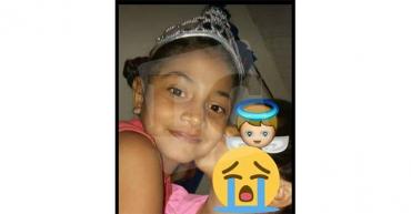Camila Figueroa, la niña de 8 años que murió atropellada  en el barrio Santander