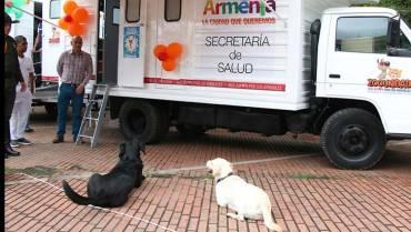 850 esterilizaciones en perros y gatos se han realizado este año
