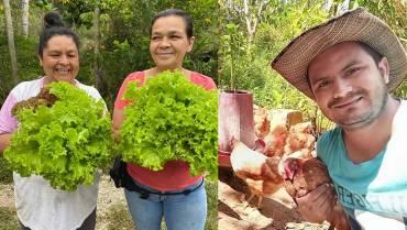 Kakataima, 10 años aportando a la agroecología quindiana