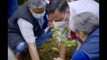 en-los-municipios-quindianos-plantaron-240-arboles-durante-sembraton-nacional
